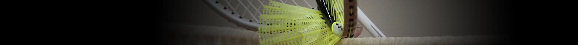 head bg badminton
